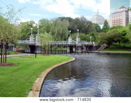 Publice Garden Bridge In Boston Massachusetts