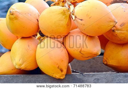 King Coconuts Display For Sell On Small Street In Malwana