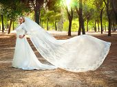 foto of bridal veil  - Beautiful bride in the woods with a flowing veil - JPG