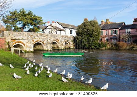 Christchurch Dorset England UK with bridge over the river green boat and pigeons