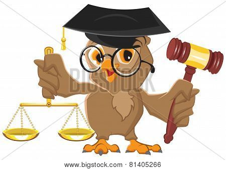 Owl Judge holding gavel and scales
