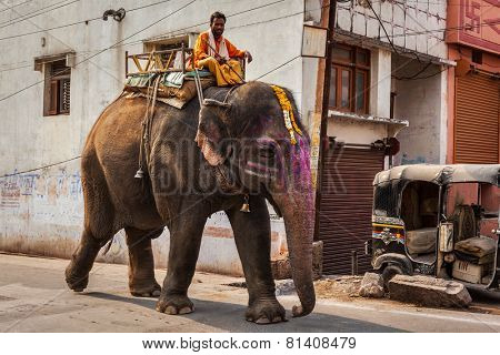UJJAIN, INDIA - APRIL 23, 2011: Mahout riding elephant in city street in India