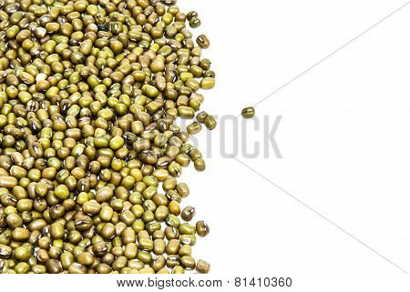 Mung bean on white background.