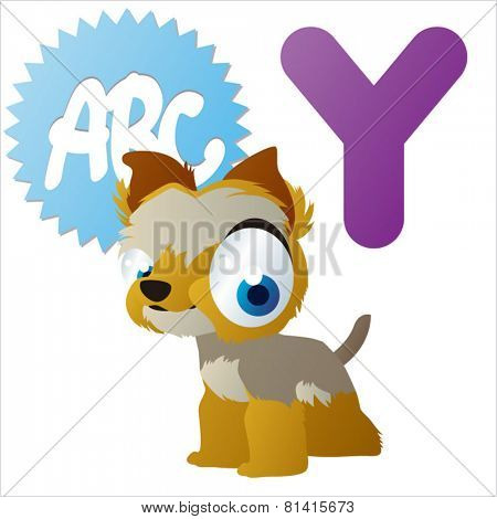 animal abc learning for kids: Y is for cute little Yorkshire Terrier , vector illustration set for children, bright colors for flash card game