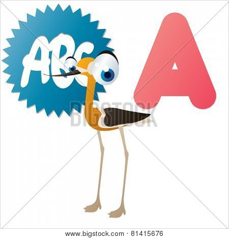 animal abc learning for kids: A is for cute little Avocet, vector illustration set for children, bright colors for flash card game