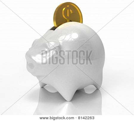 Pig Bank With Dollar Coin