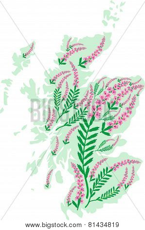 Vector Image Map Of Scotland With Heather Flowers.eps