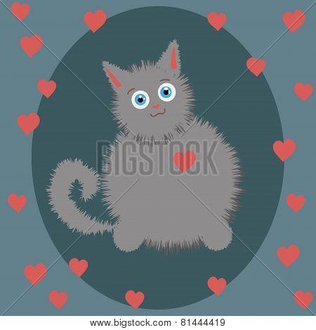 gray kitten on Valentine's Day