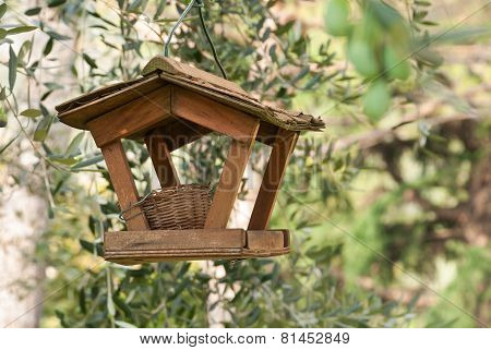 bird nest and feeder