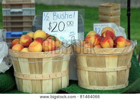 Bushels of Nectarines