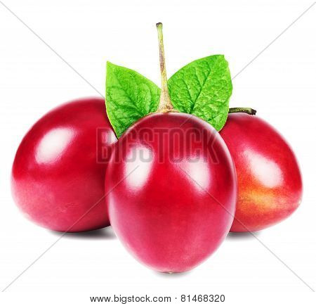 Tamarillo fruits with leaves on white background.