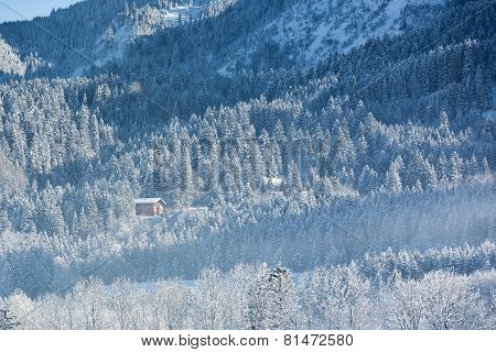 Alpine hut in wintery forest, Bavaria, Germany