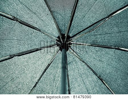 Umbrella Inside, Dripping Rain