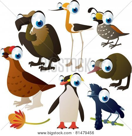 set of cute comic animals: birds: grouse, avocet, kiwi, umbrella bird, quail, penguin and vulture