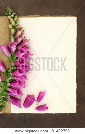 Foxglove flower border on a natural hemp notebook and brown paper background. Digitalis pupurea.