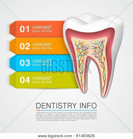 Dentistry info medical art