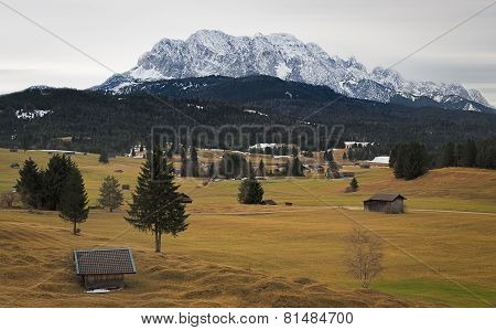 Alpine grassland with Karwendel Mountains, Alps, Germany