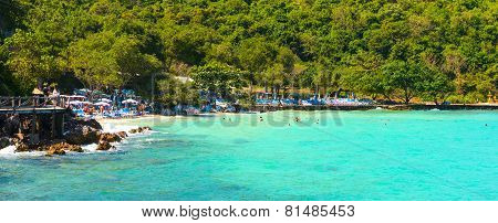 Tropical Beach On Island, At Koh Lan Island Pattaya.