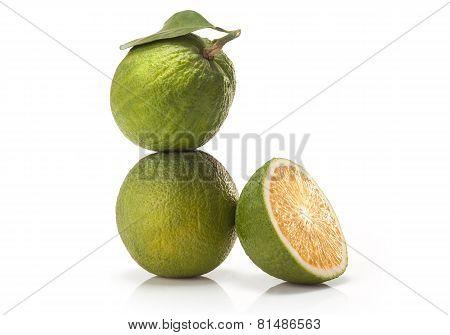 sweet green Oranges fruit