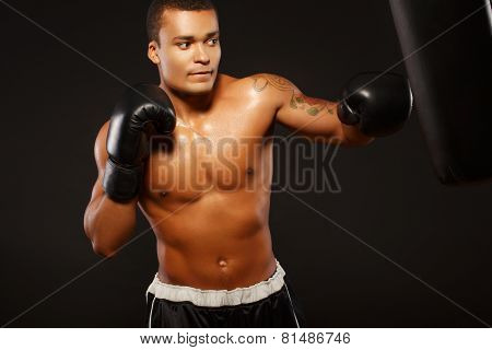 Handsome boxer on the workout