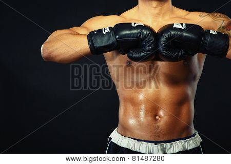 Handsome boxer posing in boxing gloves