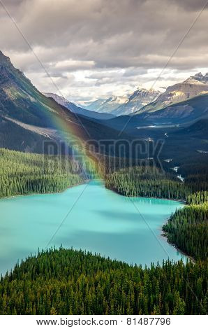 Scenic Mountain View Of Peyto Lake, Canadian Rockies