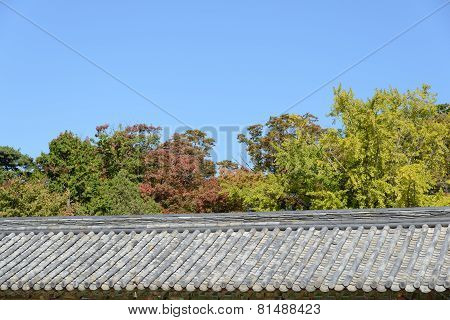 Tiled Roof With Trees