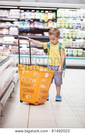 Little boy with big shopping cart in the store