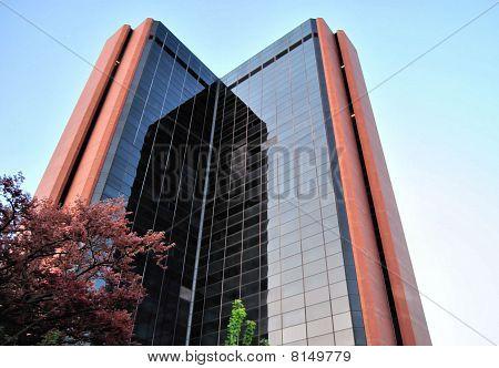 V Shape Building