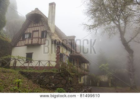 Majestic House In A Foggy Forest