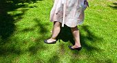 stock photo of pantihose  - leg of beautiful girl walking on the green - JPG