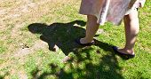 pic of pantihose  - leg of beautiful girl walking on the green - JPG