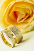 picture of stippling  - Yellow rose with two elegant textured gold wedding rings standing upright side by side on a white background with focus to the rings for a stylish greeting card or wedding invitation - JPG
