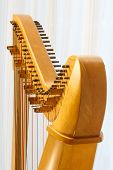 stock photo of string instrument  - Close up of Celtic harp with angle - JPG