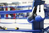 pic of boxing ring  - Boxing gloves hang on the corner of the boxing ring - JPG