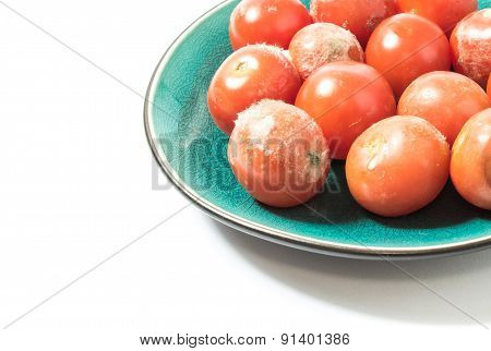Moldy Tomatoes On A Plate Closeup