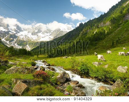 beautiful idyllic mountain scene