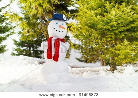 Snowman with blue hat and red scarf he forest