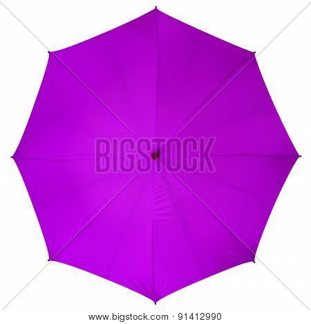 Violet Umbrella Isolated