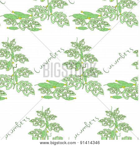 Seamless floral pattern with cucumber bushes. Vector illustration