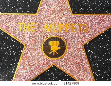 The Muppets Star On Hollywood Walk Of Fame