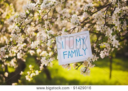 I Love My Family. Picture In Blooming Spring Garden