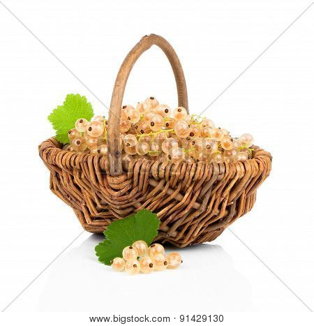 White Currant Fruit In Wicker