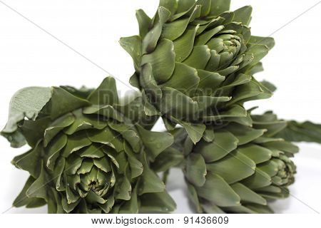 group of vegetables and cut harvesting artichokes without thorns
