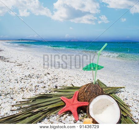 Coconut Halves By The Sea