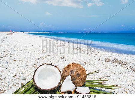Coconut Halves On Palm Leaves