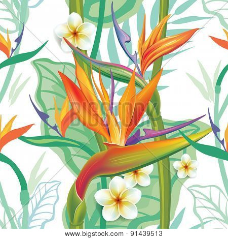 Seamless pattern with Strelitzia
