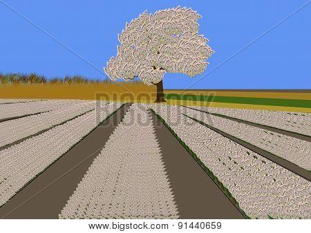 Money Tree And Field Of Money Flowers
