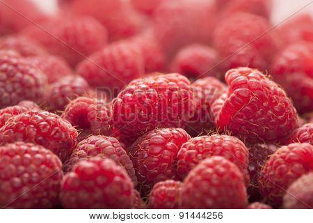background of ripe juicy raspberries