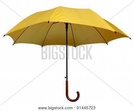 Umbrella - Yellow Isolated